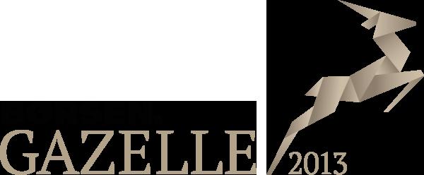 Gazelle-2013_gennemsigtighed